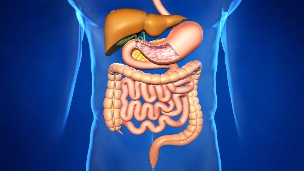 кефир восстанавливает микрофлору кишечника