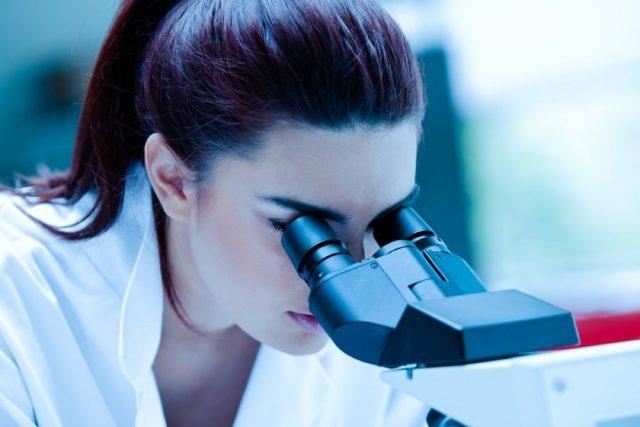 регенерация органов человека